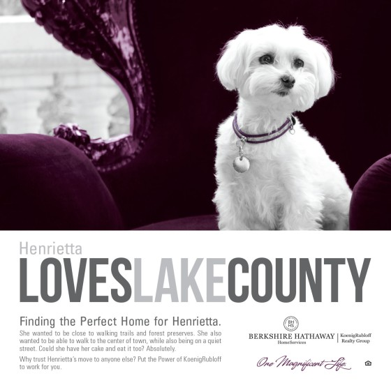 Henrietta Loves Lake County