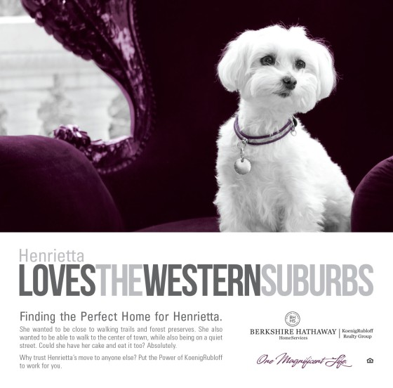 Henrietta Loves the Western Suburbs